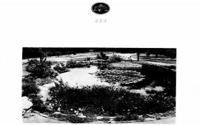 Arquitectura 222 | 1950