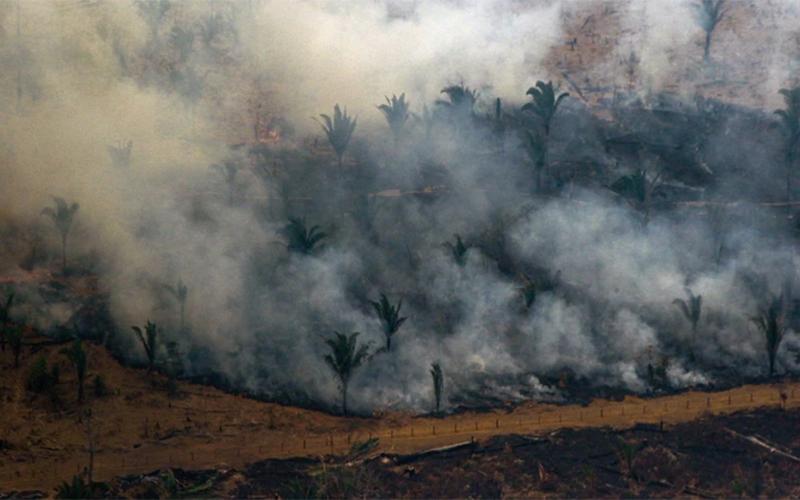 Incendio en la Amazonia | Comunicado FPAA