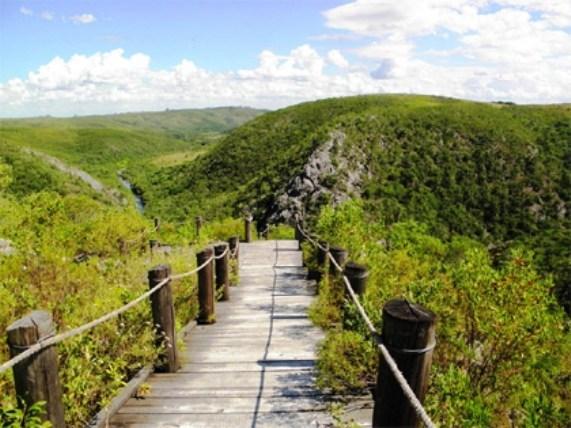 El ambiente y las áreas naturales protegidas | Mara Moya
