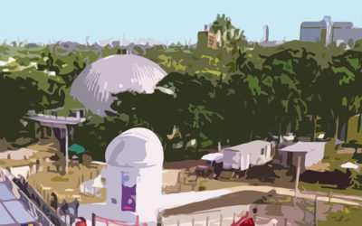 BSAU – Diciembre de 2020