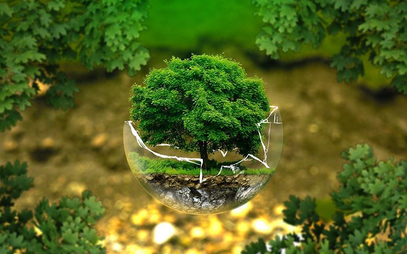 Comisión Asesora de Ambiente